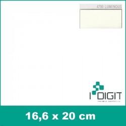 4790 Luminiscenční nažehlovací fólie / Luminous (arch)