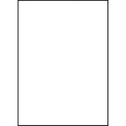 Laser Flex Bílá 01 nažehlovací fólie / SEF Textile
