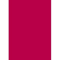 Laser Flex Červená 10 nažehlovací fólie / SEF Textile