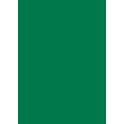 Laser Flex Zelená 25 nažehlovací fólie / SEF Textile